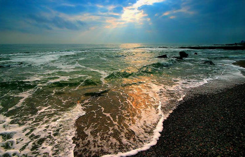 Ядовитое море
