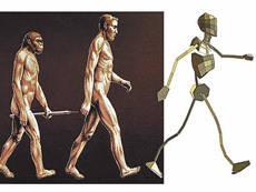 Кто заменит «хомо сапиенс»? Население Земли стремительно стареет