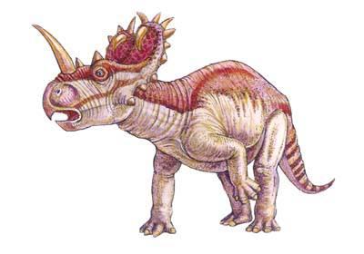 Найдено самое крупное кладбище динозавров на Земле