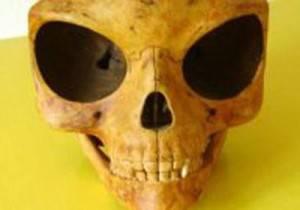 Силендский череп – какова природа данной находки?
