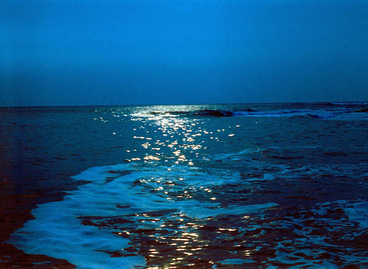 К примеру наше родное черное море