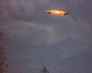 Рассекречен еще один архив об НЛО