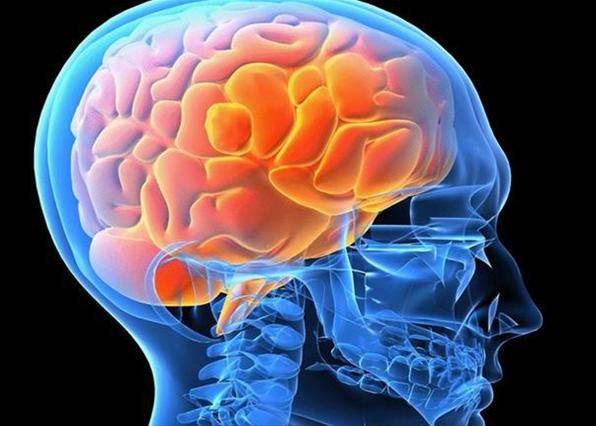 Beyninizin hansı tərəfini daha çox işlədirsiniz?