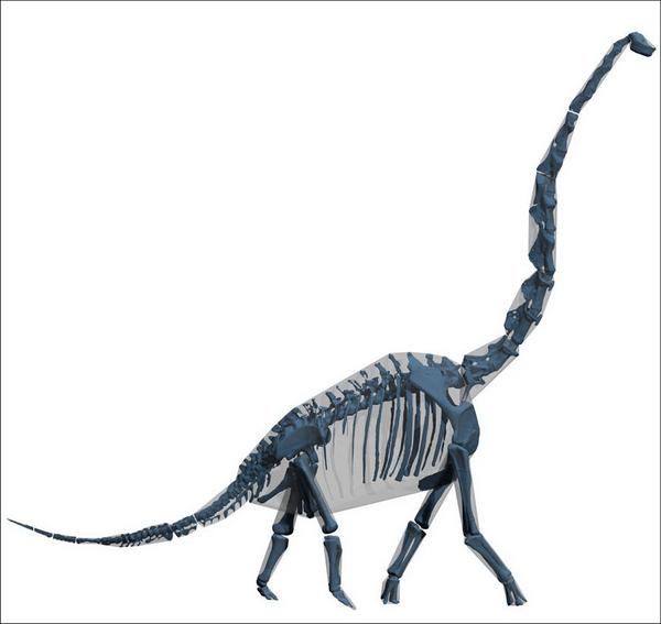 Стройные динозавры