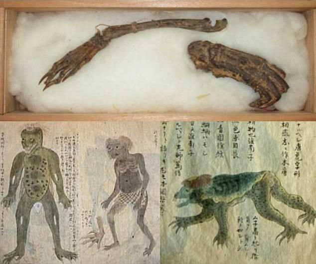 v-yaponii-na-vseobshhee-obozrenie-vystavyat-kosti-vodyanogo-demona