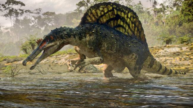 spinosaurus-4