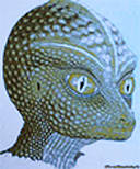 Рептилоиды живут с людьми на одной планете!