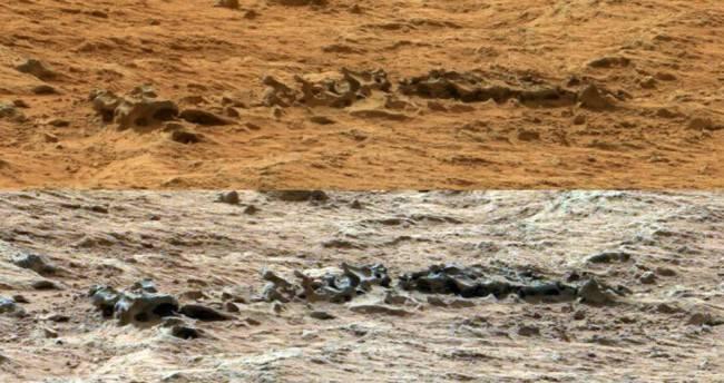 На поверхности Красной планеты нашли скелет человека