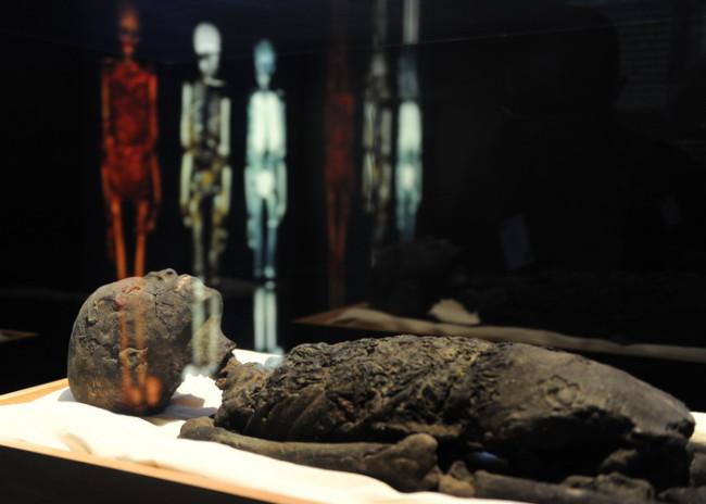 A replica of Tutankhamun's mummy is on d