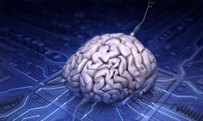 Великие загадки Вселенной: мозг