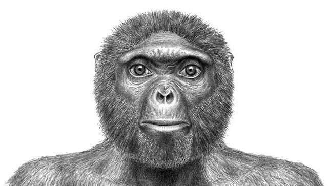 Предки современного человека могли появиться не в Африке, а на Балканах