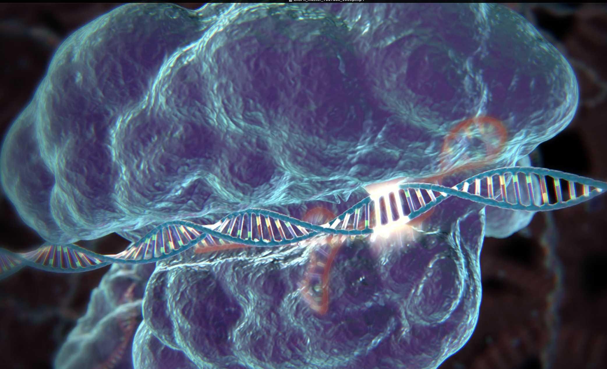 Человеческое ДНК будет превращено в пулю