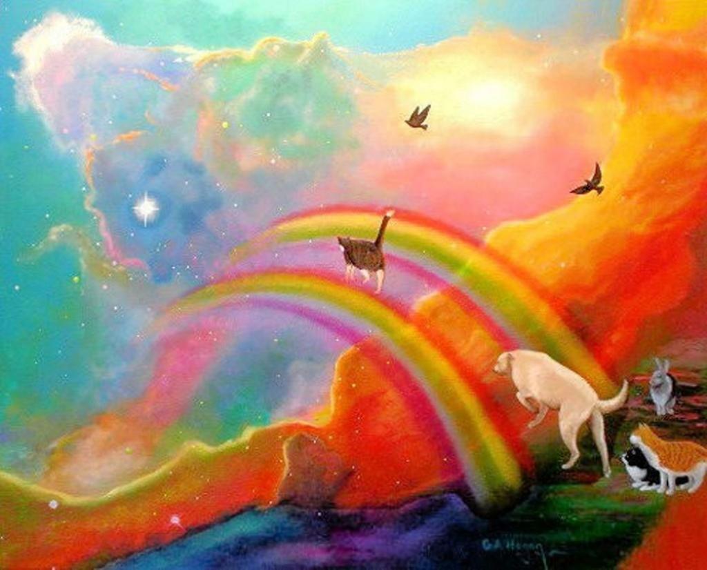 Душа и разум у животных