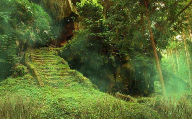 Зловещие леса