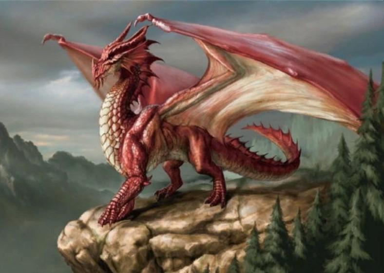 дракон западный
