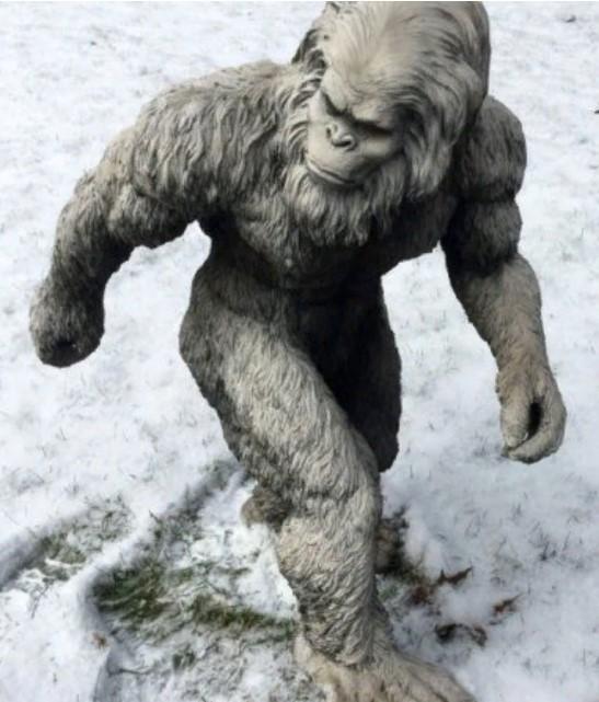 йети снежный человек