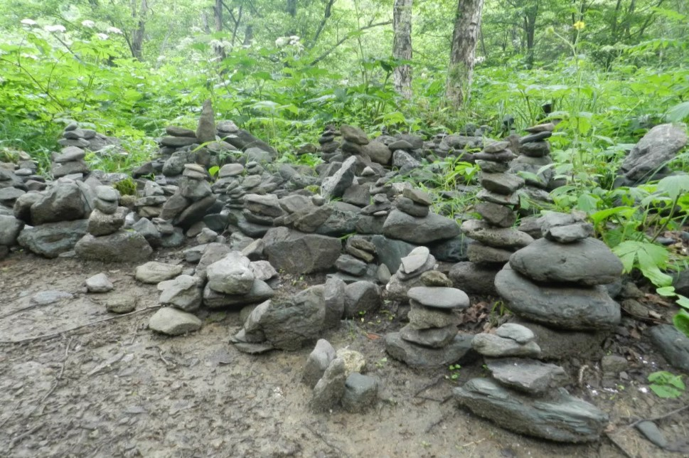 камни у лягушки сахалин