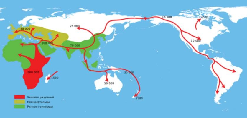 карта миграции
