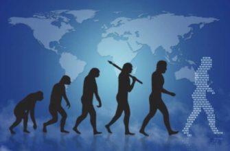 Неразгаданные тайны эволюции, которые не дают покоя учёным