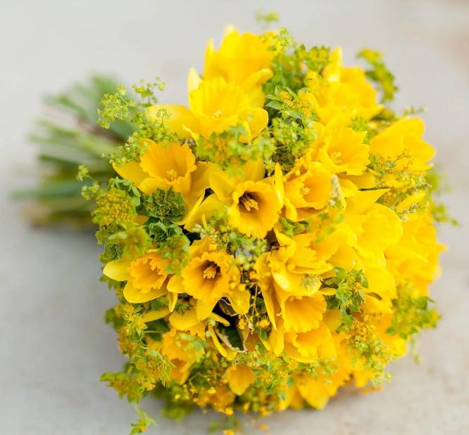 цветы на свадьбу желтые нарциссы