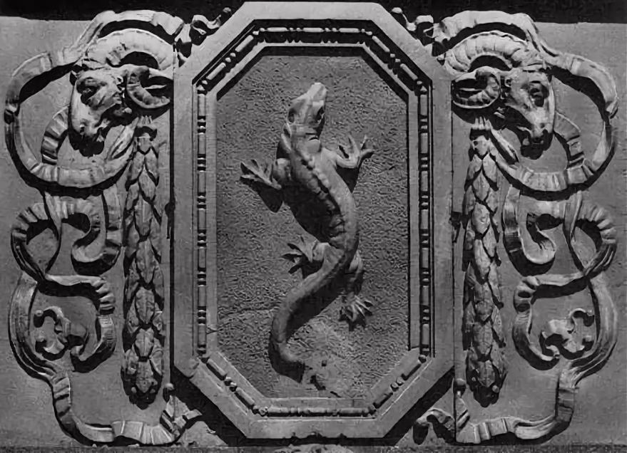 саламандра на гербе