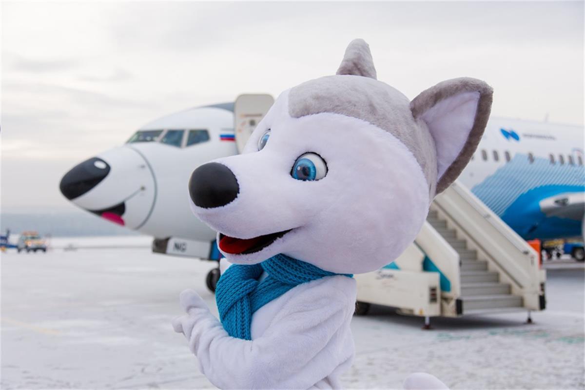 U-Лайка в аэропорту