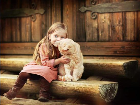 порог девочка с котом