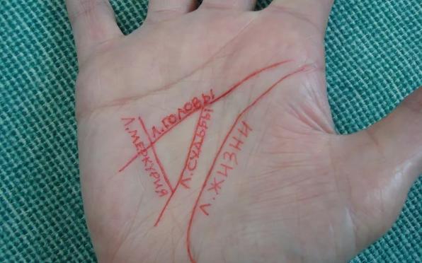 треугольник богатства на ладони