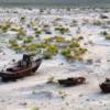 Множество загадок Аральского моря