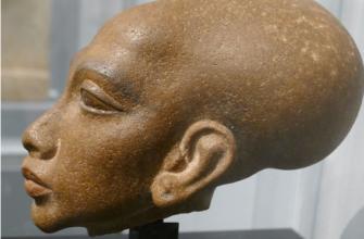 Паракасцы из Перу, жившие 3000 лет назад, не были людьми?