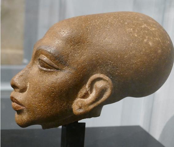 Паракасцы из южного Перу, жившие 3000 лет назад, не были людьми: проведение анализа ДНК яйцеголовых