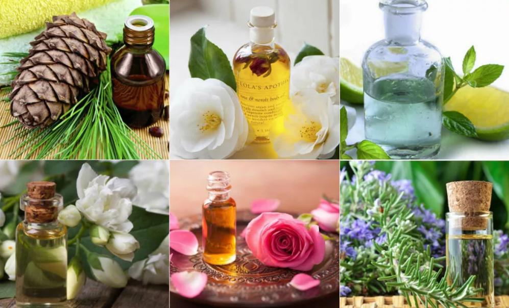 ароматерапия ароматы трав и цветов
