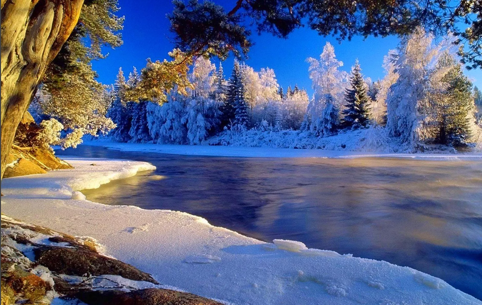 декабрь пейзаж