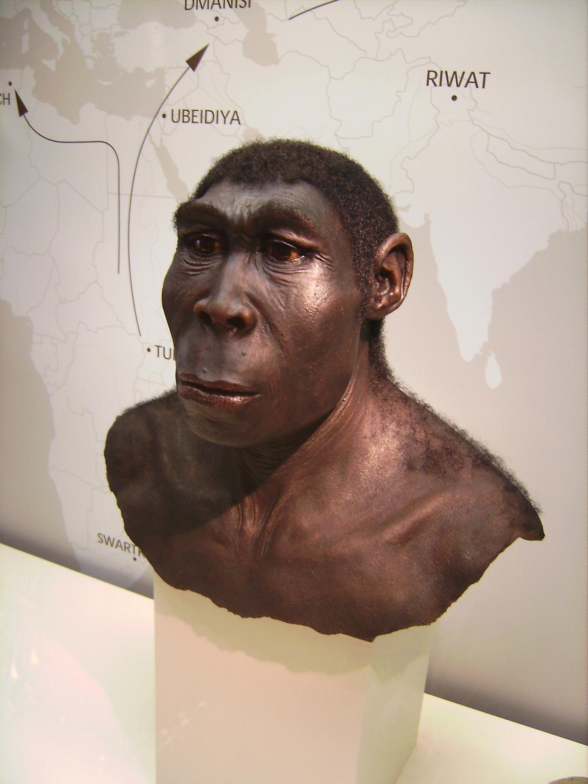 7 сокрушительных провалов палеонтологии. Ложь и фейки науки. Разоблачение учёных и научного обмана